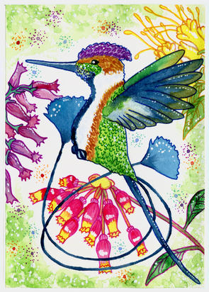 wc hummingbird2.tif
