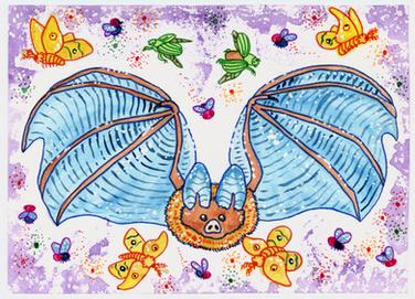 Townsend's big-eared bat