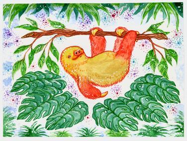 Linnaeus's two-toed sloth
