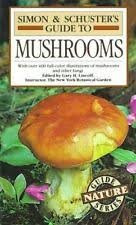 Cogumelos Venenosos - Como identificar?