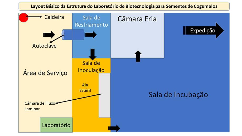projetocogumelos.org Estrutura do laboratorio de biotecnologia para sementes de cogumelos