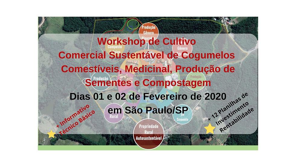 Promoção_WS_Janeiro_2020_SP.jpg