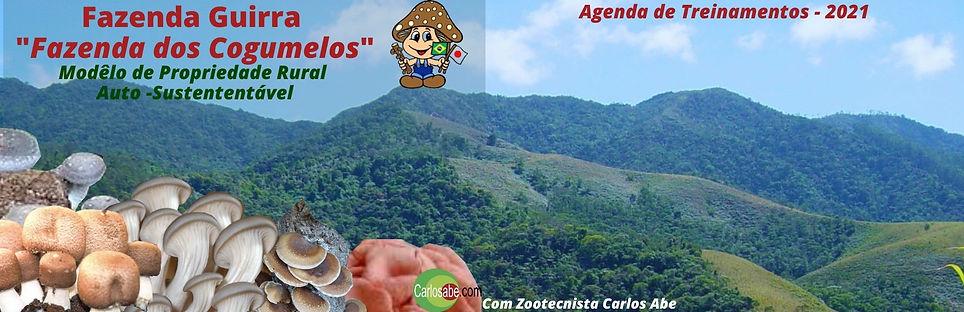 Banner da Fazenda Guirra.jpg