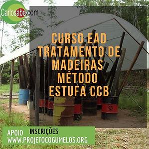 banner do curso de TMCCB.jpg