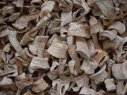 cogumelos desidratados tipo A (1).jpg