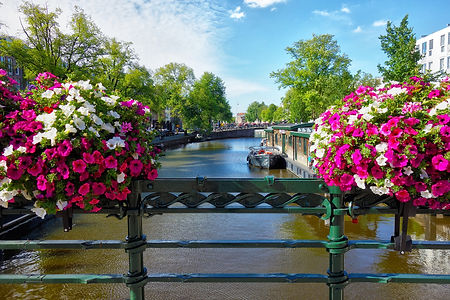 Flowers over boat on river