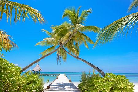 tropical beach pier