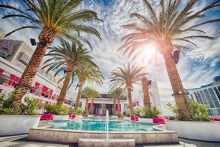 Palm trees at luxury resort