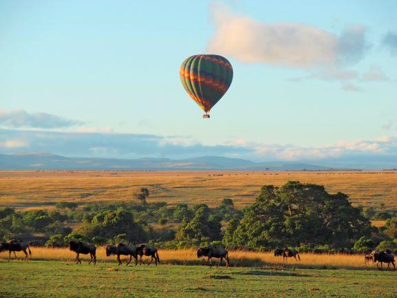 Hot Air Ballon Ride over African Safari