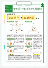 AM診断サンプル_03総合診断_四字熟語_001.jpg
