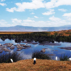 Kimgoni-tanzania-safari-2.jpg