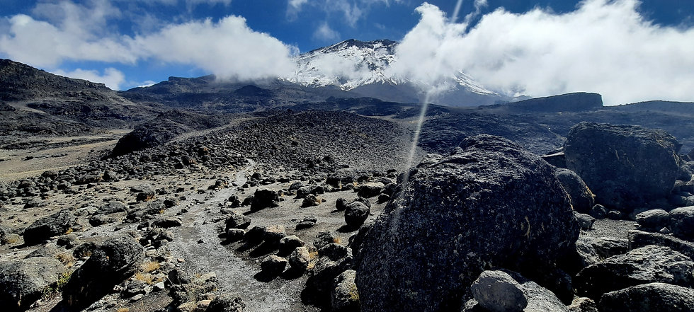 kimgoni-tanzania-safari-kilimanjaro.jpg