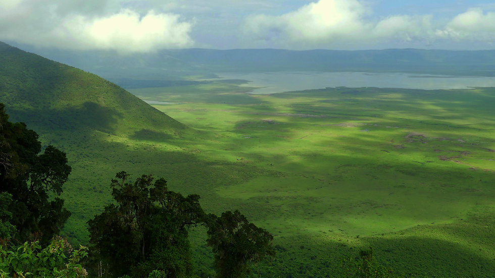 kimgoni-tanzania-safari-ngorongoro.jpg