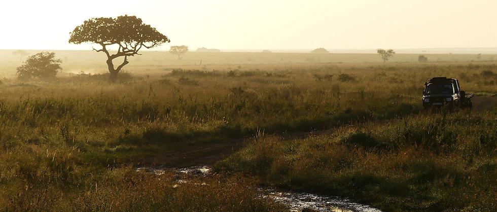 kimgoni-tanzania-safari-serengeti (14).j