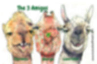 3 Amigos 6x4.jpg