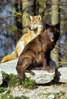 web wolves.jpg