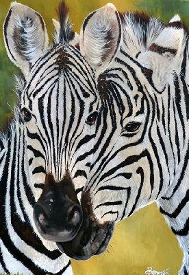 zebra closeup.jpg