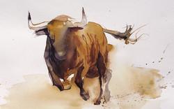 El toro 4