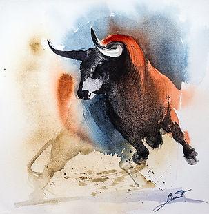 red_bull_Urbino_web.jpg