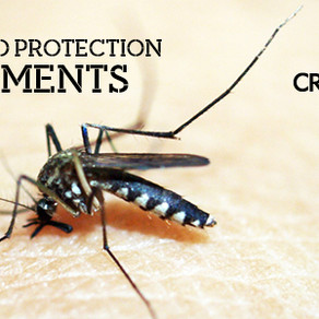 15/06 Mosquito protection Day