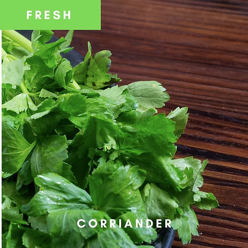 Coriander / Dhania / Cilantro Fresh 40g
