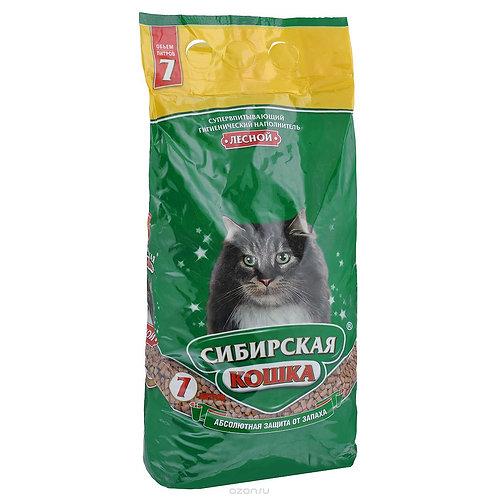 Сибирская кошка Лесная 7 л.