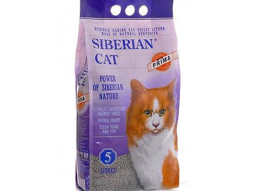 Сибирская кошка Прима 5 л.