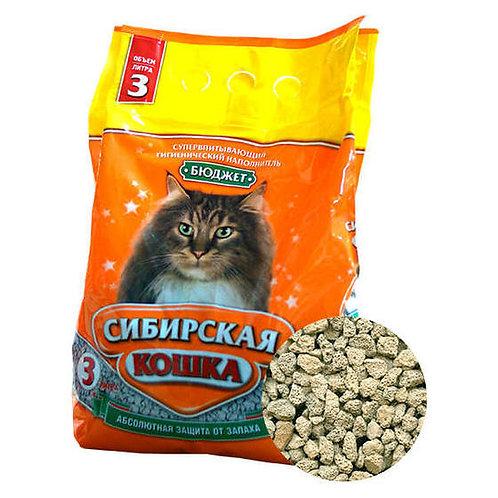 Сибирская кошка бюджет 3л.