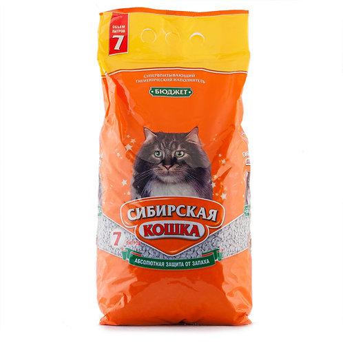 Сибирская кошка бюджет 7л.
