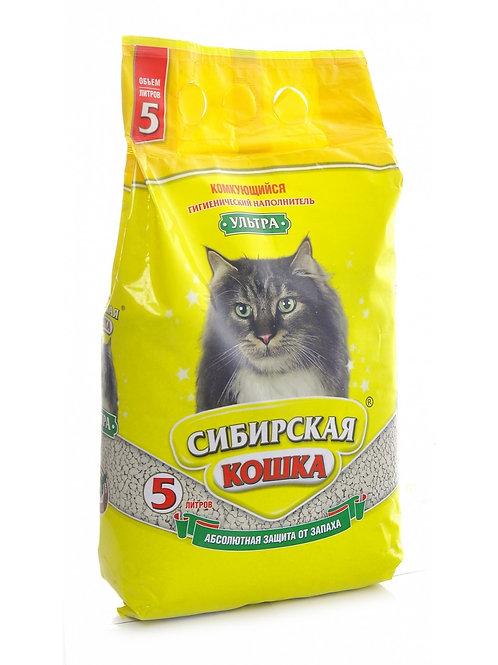 Сибирская кошка ультра 5л.