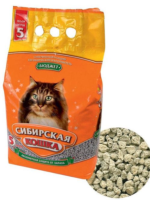 Сибирская кошка бюджет 5л.