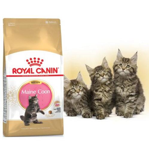 Royal Canin для котят мейн-кун , Kitten Мaine Coon 400 гр.