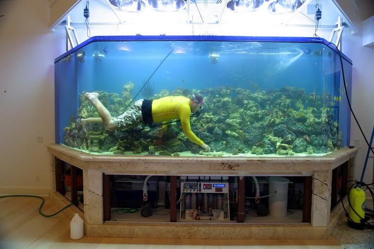 Подготовка аквариума !