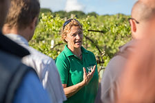 Biddenden Vineyards Guided Tour.jpg