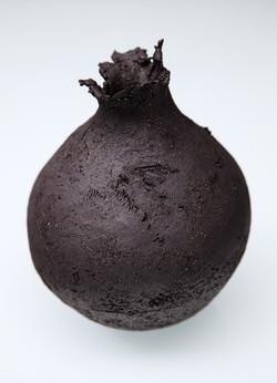 seed pod black
