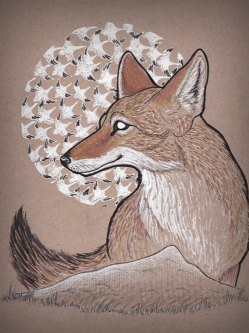 Coyote - Print - various sizes - $15 to $35