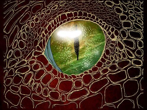 Dragon's Eye- Print - various sizes - $15 to $35