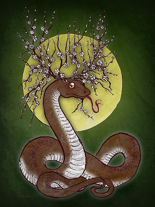 Wind Snake - Print - various sizes - $15 to $35
