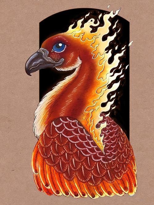 Phoenix - Print - various sizes - $15 to $35