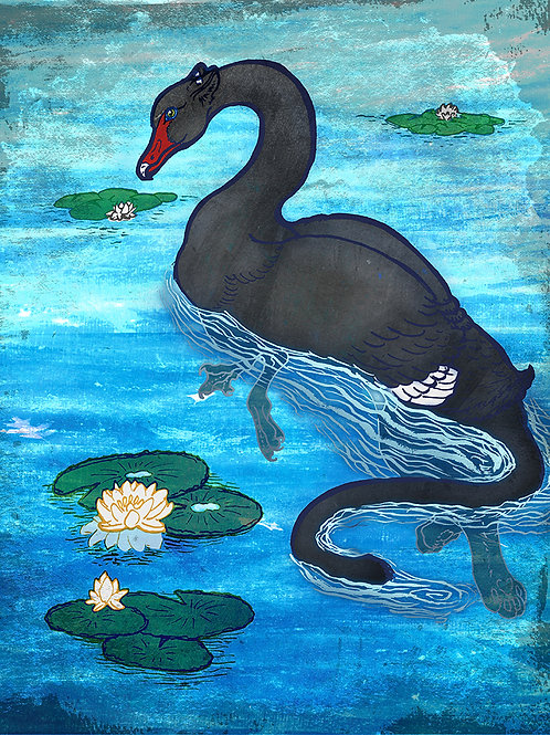 Swan Griffin - Print - various sizes - $15 to $35
