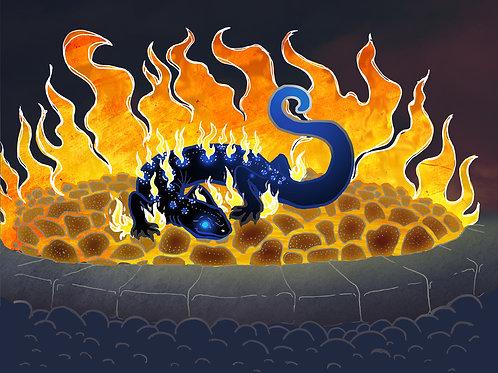 Salamander's Nest - Print - various sizes - $15 to $35