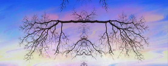 Reflective Symmetry #7.jpg
