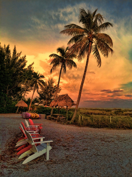 By the Shore, Sanibel Island, Florida