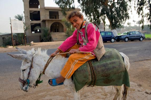 Girl On Donkey, Saqqara,Egypt