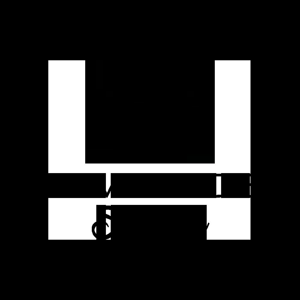 DumBlonde Smart Hair Logo redesign