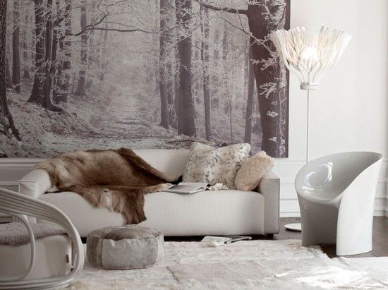 CREATE A COZY LOOK WITH FUR IN YOUR HOME!