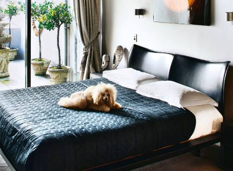 5 TIPS ON HOW TO STYLE CUSHIONS ON YOUR BED!