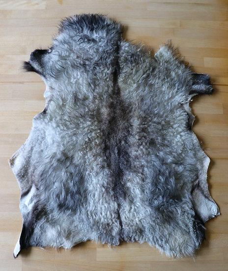 Gray Icelandic Shearling Pelt