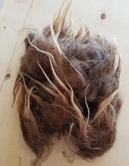 Moorit Icelandic Fleece