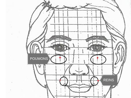Comment fonctionne la réflexologie faciale ?